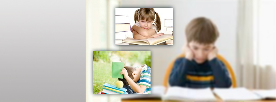 The Struggling Reader 			 			 			Specially developed curriculum materials designed to strengthen any reading program.